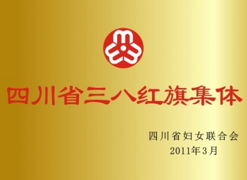2011年四川省三八红旗集体