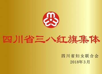 2018年四川省三八红旗集体